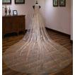Champagne-Blinghochzeitsschleierbraut-Hochzeitsschleier luxuriöser langer Schleier