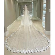 Kathedrale Spitze Applique Schleier exquisite und elegante Brautschleier Braut großen Schwanz Schleier 350CM